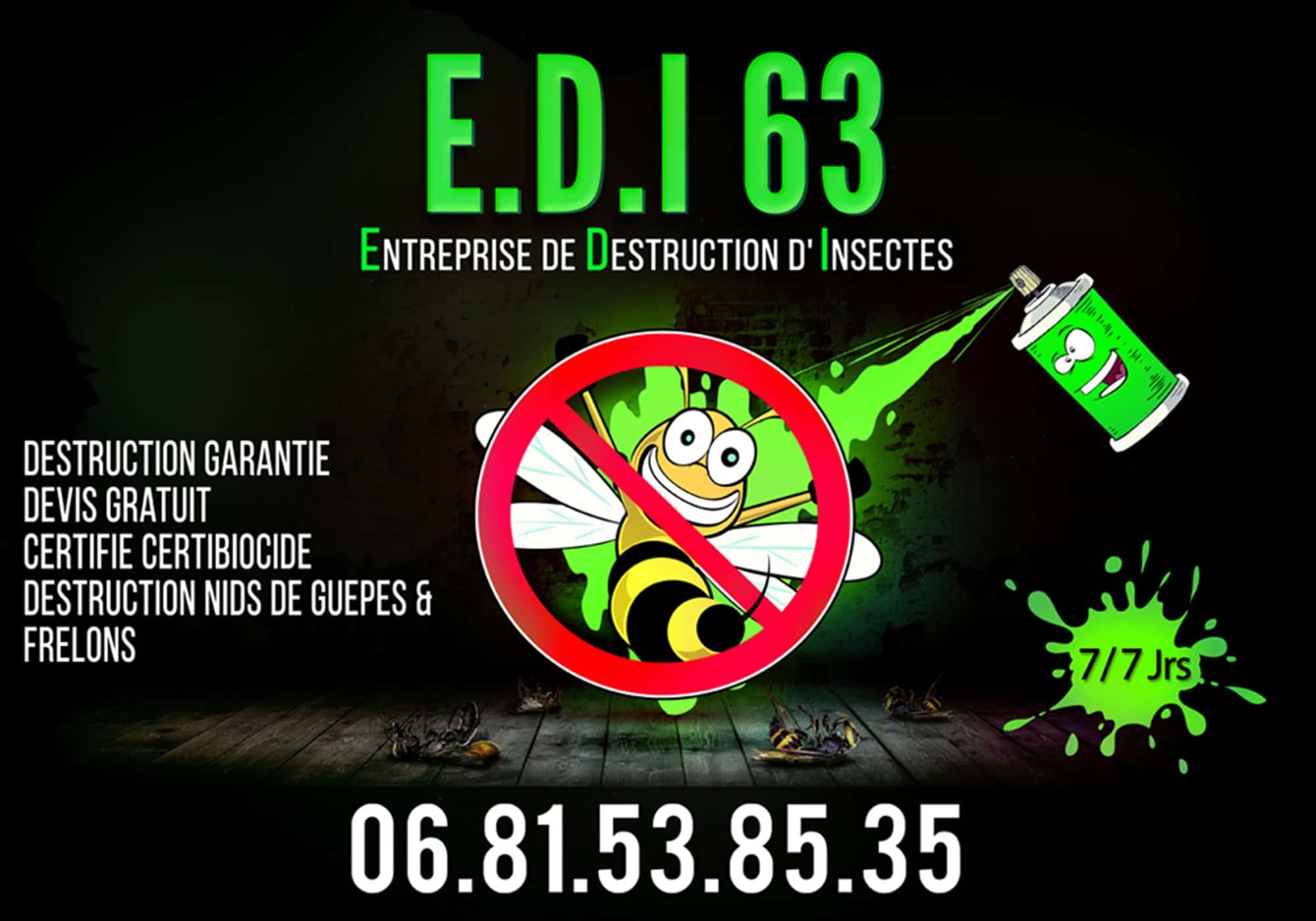 E.D.I 63 - Entreprise de destruction d'insectes